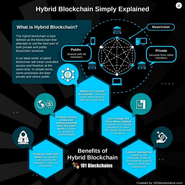 Hybrid Blockchains